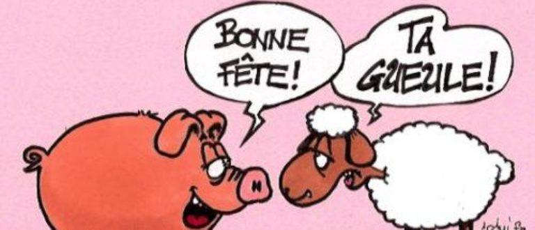 Article : Moutonneries et autres Pitreries du même enclos